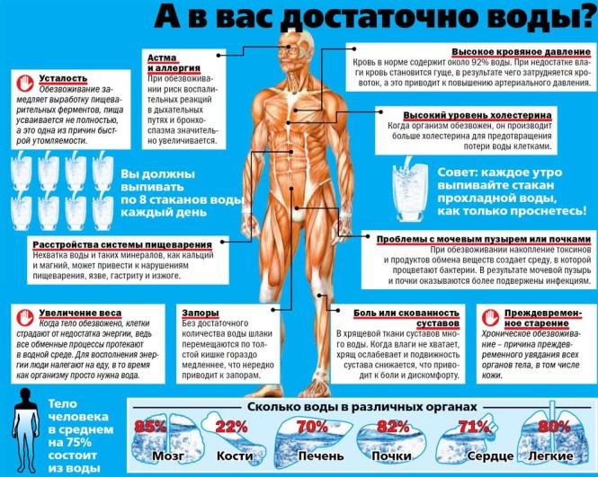 Множество проблем со здоровьем человек может испытывать при недостаточном ежесуточном потреблении воды. Поскольку тело человека в среднем на 75% состоит из воды, клетки нуждаются в обновлении и при обезвоживании затрудняется вывод из организма отмерших клеток