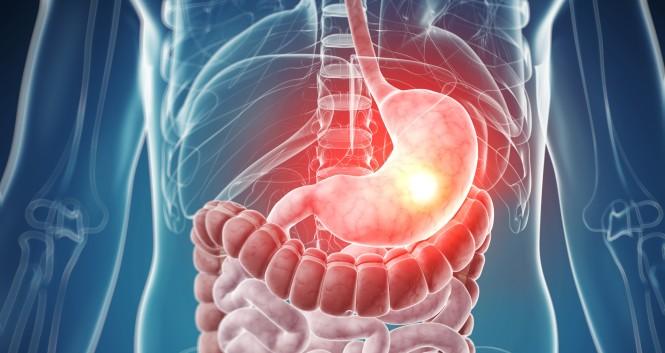 После попадания в желудок, таблетка Нальпаза переходит в кишечник, где оболочка таблетки растворяется, и через 2–2,5 часа в плазме крови отмечается максимальная концентрация лекарства