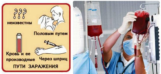Основные пути передачи гепатита С