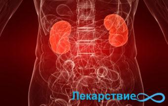 Пиелонефрит и его симптомы