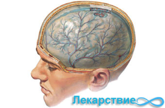 Энцефалопатия головного мозга: определение и проявления