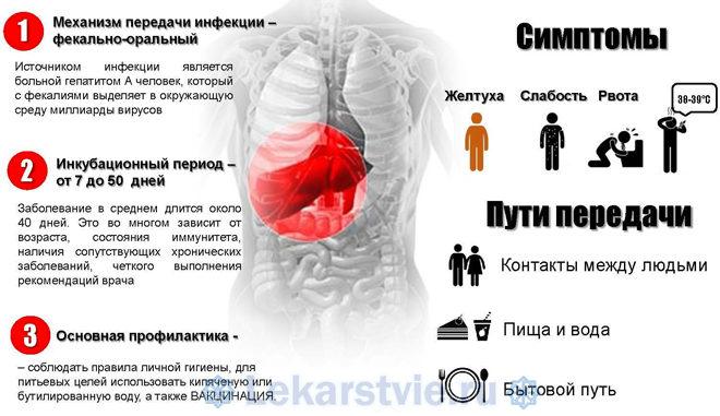 Гепатит А: что это за болезнь?